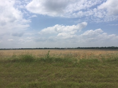 China Spring Residential Lots & Land For Sale: Tbd Wortham Bend Road