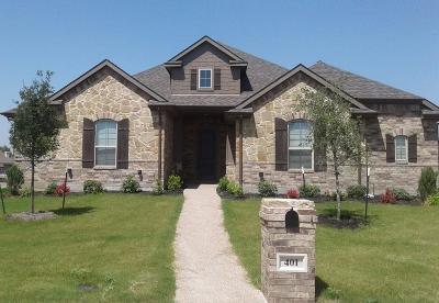 McGregor Single Family Home For Sale: 401 Red Rock Court
