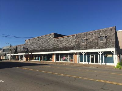 McGregor Commercial For Sale: 203 S Main Street