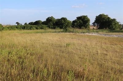 Lorena Residential Lots & Land For Sale: 1049 Birdie Lane