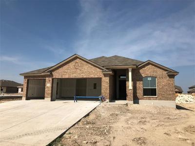 Lorena Single Family Home For Sale: 3109 Skinner Drive
