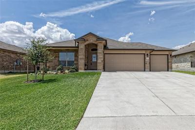Lorena Single Family Home For Sale: 2825 Gilchrist Drive