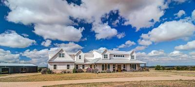 Single Family Home For Sale: 3966 Box Ranch Road #RES