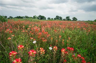 Waco Farm & Ranch For Sale: 1628 Pioneer Parkway