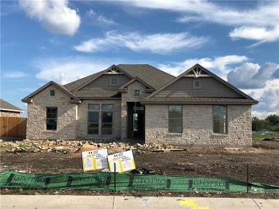 Waco Single Family Home For Sale: 10329 Creekside Lane