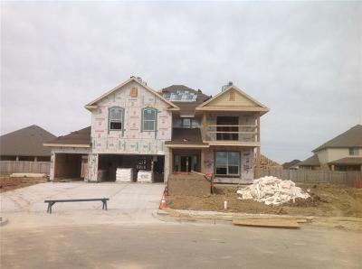 Waco Single Family Home For Sale: 1117 Milford Drive