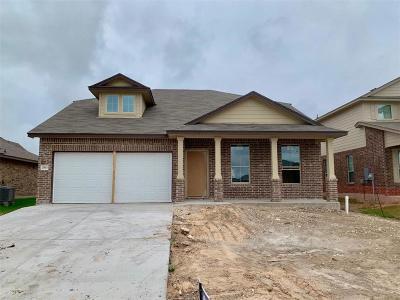 Lorena Single Family Home For Sale: 2913 Jackal Drive
