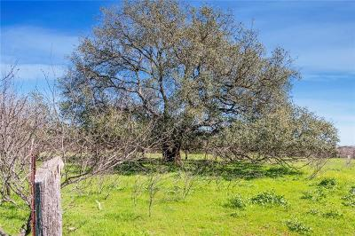 China Spring Farm & Ranch For Sale: Tba Yankie Road