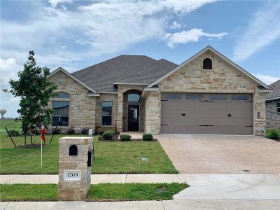 Waco Single Family Home For Sale: 1709 Fabian Drive