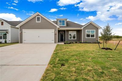 Waco Single Family Home For Sale: 208 Swan Lake Circle
