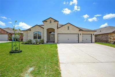 Waco Single Family Home For Sale: 5312 Flat Iron Drive