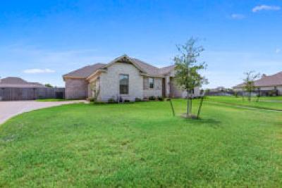 McGregor Single Family Home For Sale: 300 Desert Sky Drive