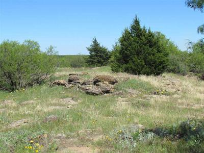 Residential Lots & Land For Sale: Hwy 287