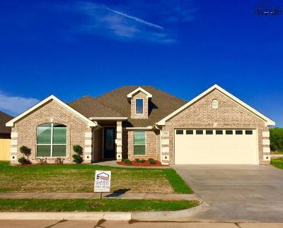 Wichita County Single Family Home For Sale: 5006 Blue Mesa Lane