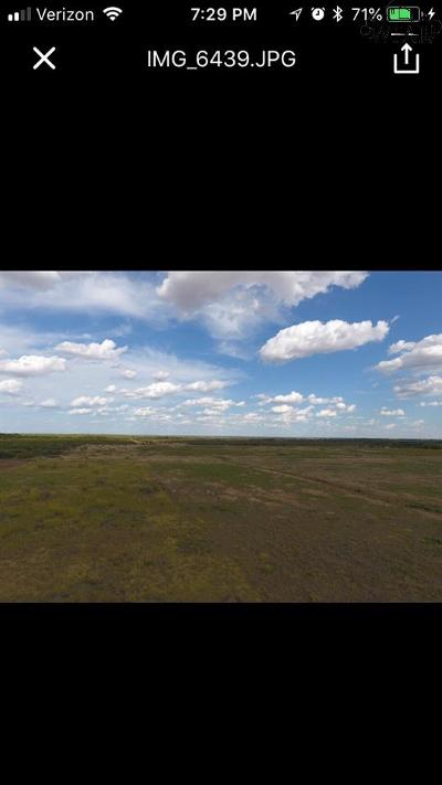 Young County Residential Lots & Land For Sale: Tbd Fm 3329