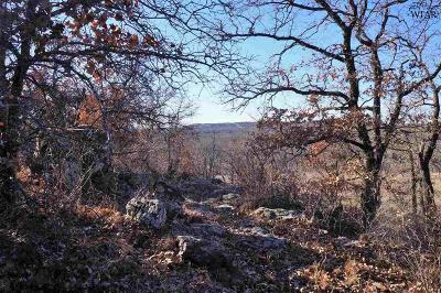 Jack County Residential Lots & Land For Sale: 838 Ac Fm 2190