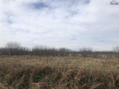 Wichita Falls Residential Lots & Land For Sale: 1 Trout Road