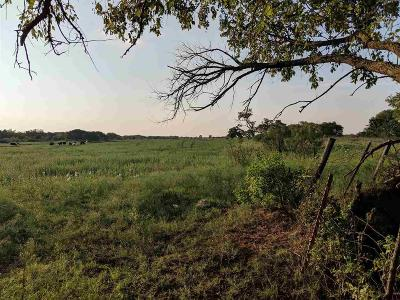 Wichita County Residential Lots & Land For Sale: 2688 Eidson Road