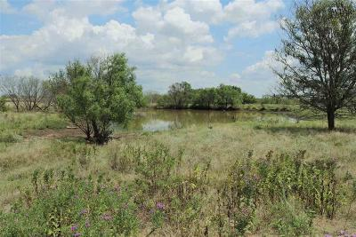 Clay County Residential Lots & Land For Sale: 299 Acres Riverland Road
