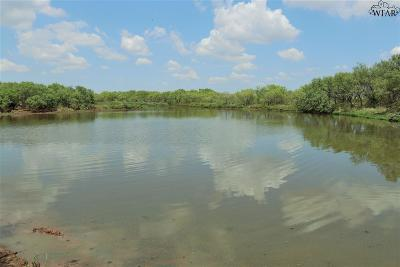 Clay County Residential Lots & Land For Sale: 120 Acres Lechner Road