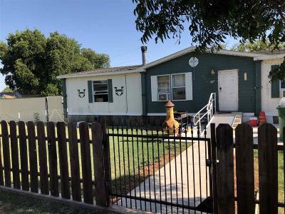 Iowa Park Single Family Home For Sale: 207 W Emerald Avenue