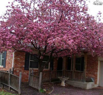 Wichita Falls TX Single Family Home For Sale: $150,000