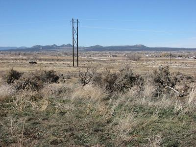 Residential Lots & Land For Sale: 19.92 Acres Off Old Hwy 91
