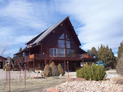 Cedar City Single Family Home For Sale: 2951 S 9100 W