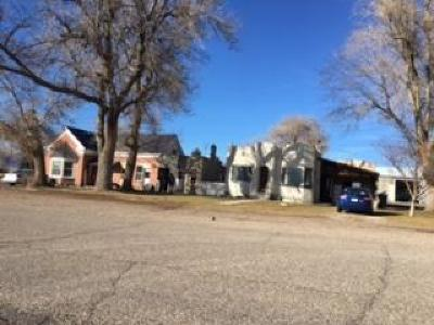 Beaver Multi Family Home For Sale: 420 N Main Street
