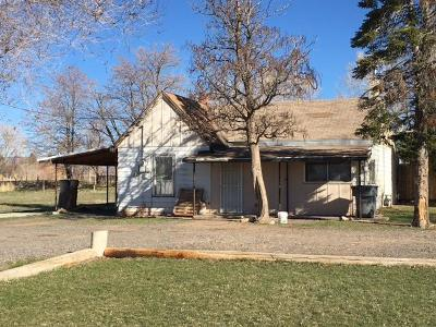 Beaver Single Family Home For Sale: 295 N 800 East