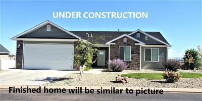 Cedar City Single Family Home For Sale: 281 N Pachea Trail