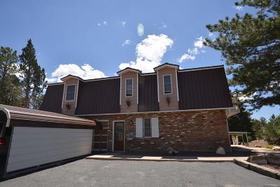 Cedar City Single Family Home For Sale: 4362 N Hwy 91