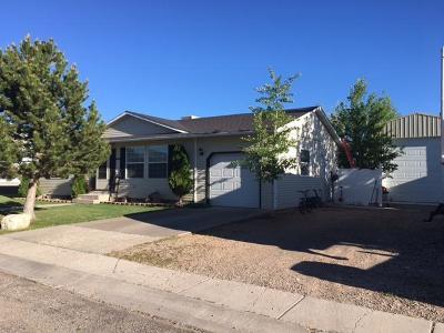 Beaver Single Family Home For Sale: 130 E 885 Norh