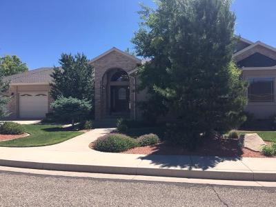 Cedar City Single Family Home For Sale: 2260 W Crestview Cir