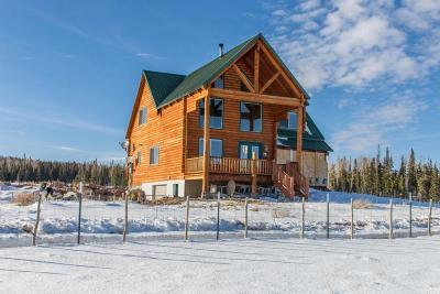Brian Head Single Family Home For Sale: 2945 S 2225 E