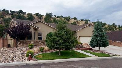 Cedar City Single Family Home For Sale: 1355 N Fairway