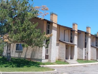 Parowan Single Family Home For Sale: 645 W Old Hwy 91 #1