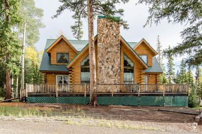 Beaver Single Family Home For Sale: 176 E 343 N