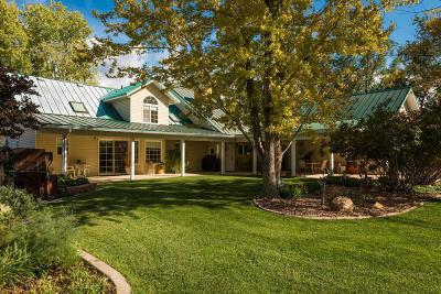 Cedar City Single Family Home For Sale: 3675 N Driftwood Ln