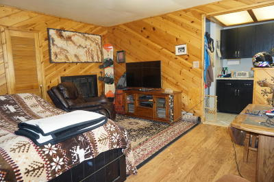 Brian Head Condo/Townhouse For Sale: 226 S Highway 143