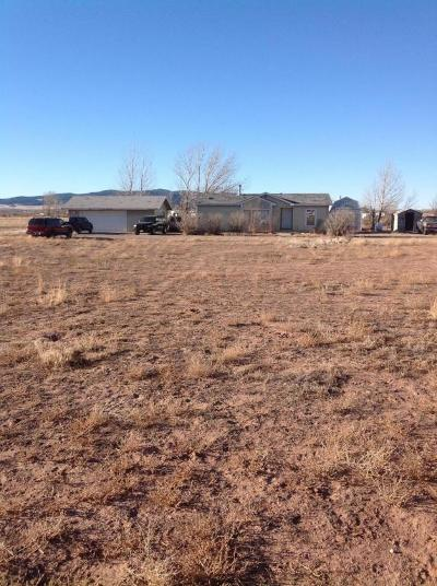Cedar City UT Single Family Home For Sale: $160,000