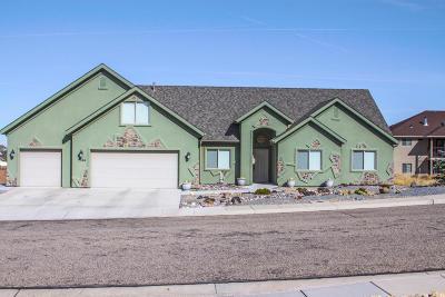 Cedar City Single Family Home For Sale: 2744 W 425 S