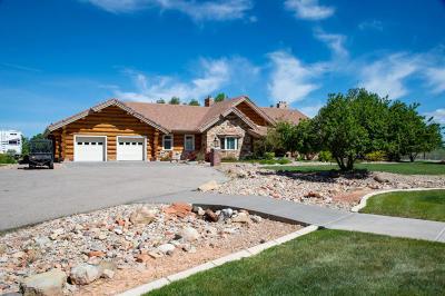 Parowan Single Family Home For Sale: 1050 W Old Hwy 91