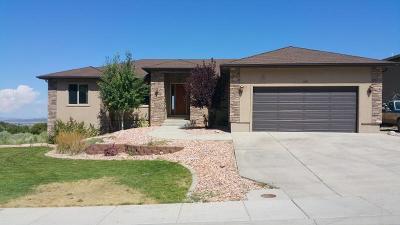 Cedar City Single Family Home For Sale: 1157 E Ashdown Forest Rd