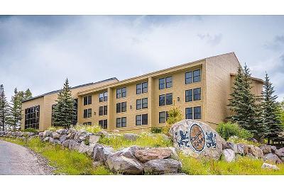 Brian Head Condo/Townhouse For Sale: 150 W Ridge View