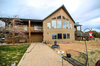Cedar City Single Family Home For Sale: 5228 W 3600 N