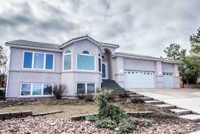 Cedar City Single Family Home For Sale: 2255 W 546 S