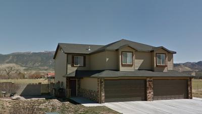Cedar City Single Family Home For Sale: 2978 Gemini Meadows Ln