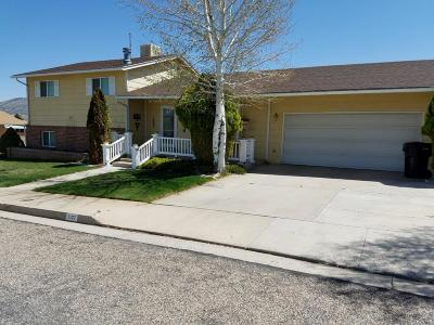 Cedar City Single Family Home For Sale: 1107 S Interstate Dr