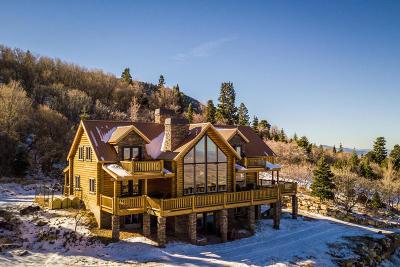 Cedar City Single Family Home For Sale: 2432 S High Maple Cir